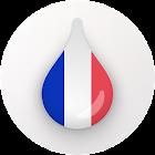 Drops: Изучайте Французский язык! icon