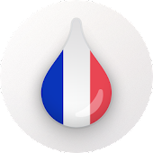 Drops: Learn French language and words for free