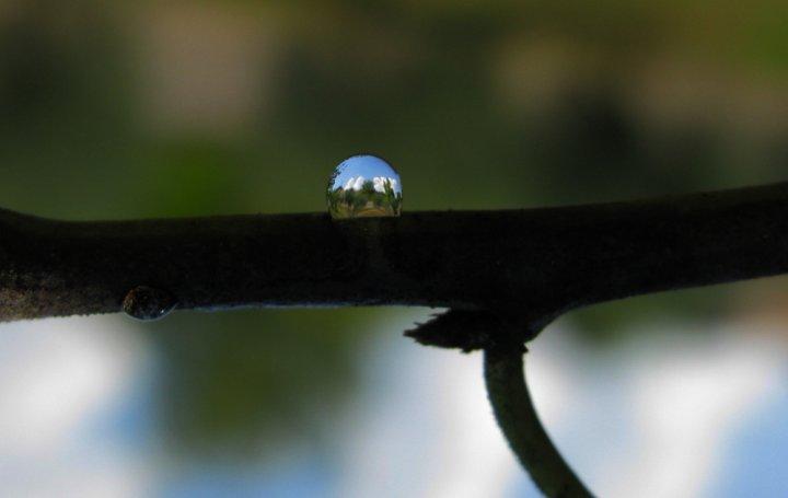 Un paesaggio in una goccia di oneangel