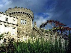 Visiter Dublin Castle