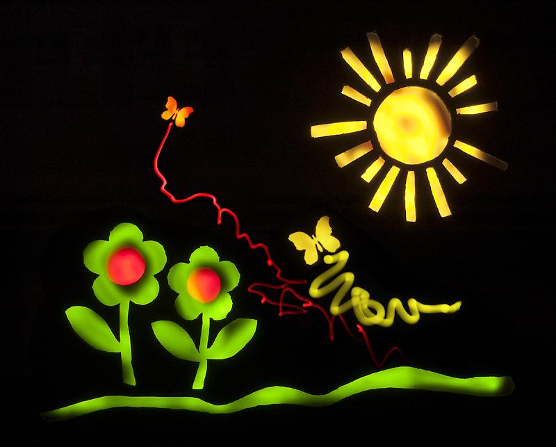 Fiori, Farfalle e Solleone. di renzodid