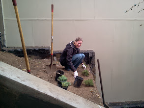 Photo: Hidden Garden Steps volunteer Lynn Kane onsite (16th Avenue, between Kirkham and Lawton streets in San Francisco's Inner Sunset District) for the January 2014 monthly Steps clean-up and garden-maintenance event; she was part of a group that worked, in spite of light rain and cold weather, to make sure nearly five dozen plants donated by our San Francisco Department of Public Works colleagues were added to the gardens in progress. interested volunteers are welcome to join these volunteer-driven community-based efforts on the second Saturday of each month from 1- 3 pm.   For more information about the Steps, please visit our website (http://hiddengardensteps.org), view links about the project from our Scoopit! site (http://www.scoop.it/t/hidden-garden-steps), or follow our social media presence on Twitter (https://twitter.com/GardenSteps), Facebook (https://www.facebook.com/pages/Hidden-Garden-Steps/288064457924739) and many others.