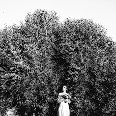 Wedding photographer Dmitriy Besov (Zmei99). Photo of 23.11.2017