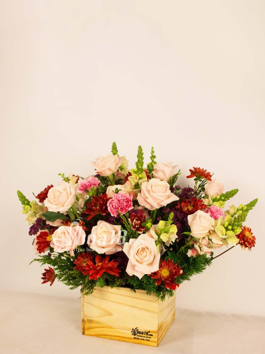 hoa đẹp ngày 27 2
