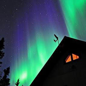 by Jeff Weaver - Landscapes Starscapes ( sky, borealis, fairbanks, stars, jeff weaver, alaska, aurora, biggimote, night )