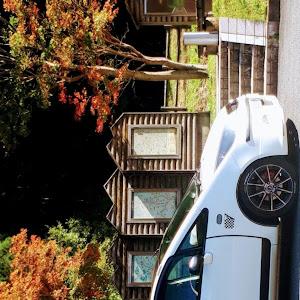 コルト  2003年式1500cc4WDエレガンスバージョンのカスタム事例画像 オブヤンさんの2020年10月20日15:17の投稿