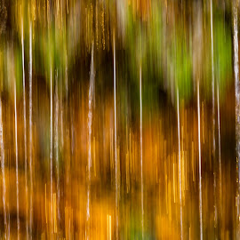Drip Line by Kevin Frick - Abstract Patterns ( color, abstract, water )