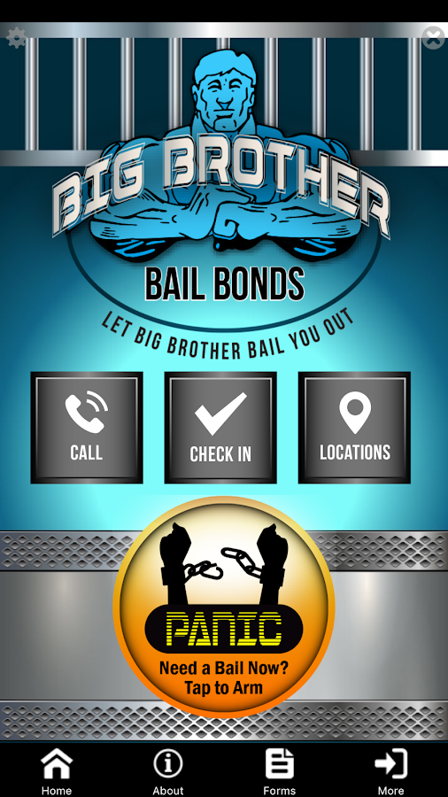 Big Brother Bail Bonds- screenshot