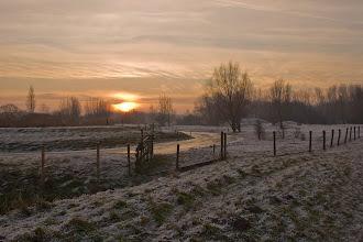 Photo: Nederland - Natuur - Winter Foto: Henk van Schie