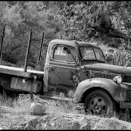 Dodge Truck by Dave Lipchen - Black & White Objects & Still Life ( dodge truck )