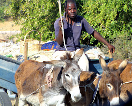 Photo: Donkey cart