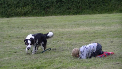 Photo: Don't worry, Will isn't upset, he's just exhausted after tugging with Galu!