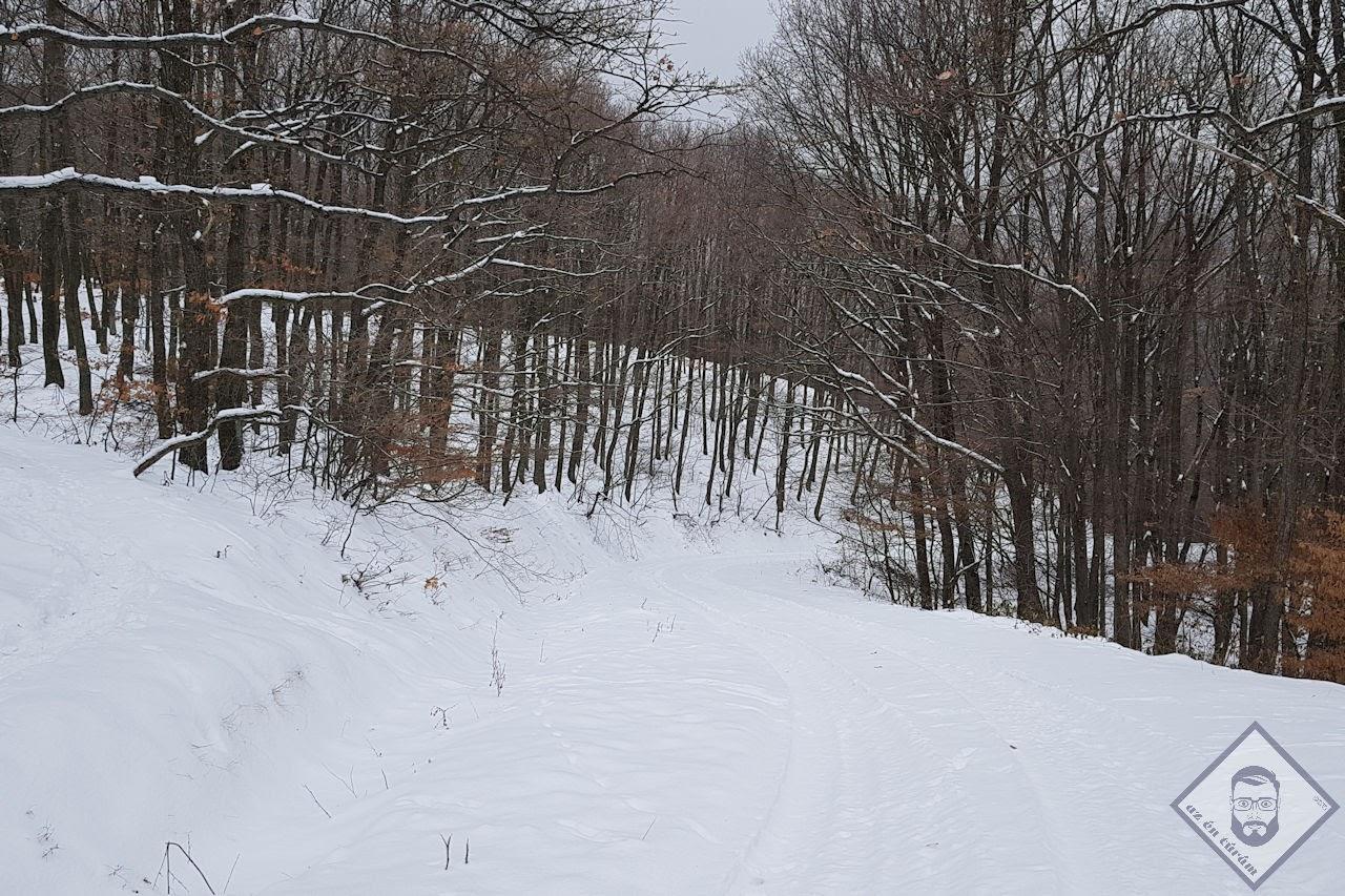 KÉP / Pont elég hó van