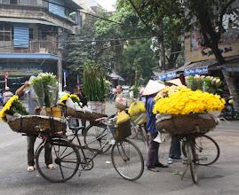 Photo: Day 229 -  Beautiful Flowers, Ha Noi (Vietnam)