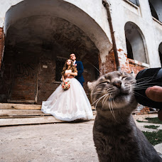 Wedding photographer Dmitriy Reshetnikov (yahoo13). Photo of 23.09.2018