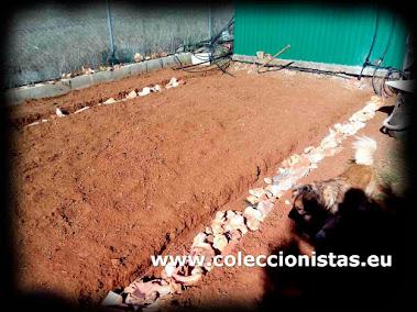 Coleccionistas.eu - Instalacion de un invernadero - Cimientos del murete