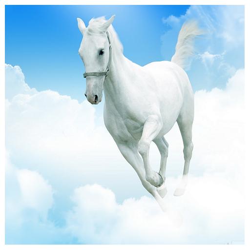 QuickTime - Download - Apple