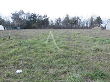 terrain à Romorantin-Lanthenay (41)
