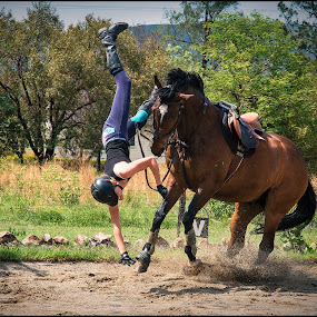 Gravity by Adrian Chinery - Sports & Fitness Other Sports ( ride, rider, buck, fall, horse, eqestrian, sport, bronco,  )