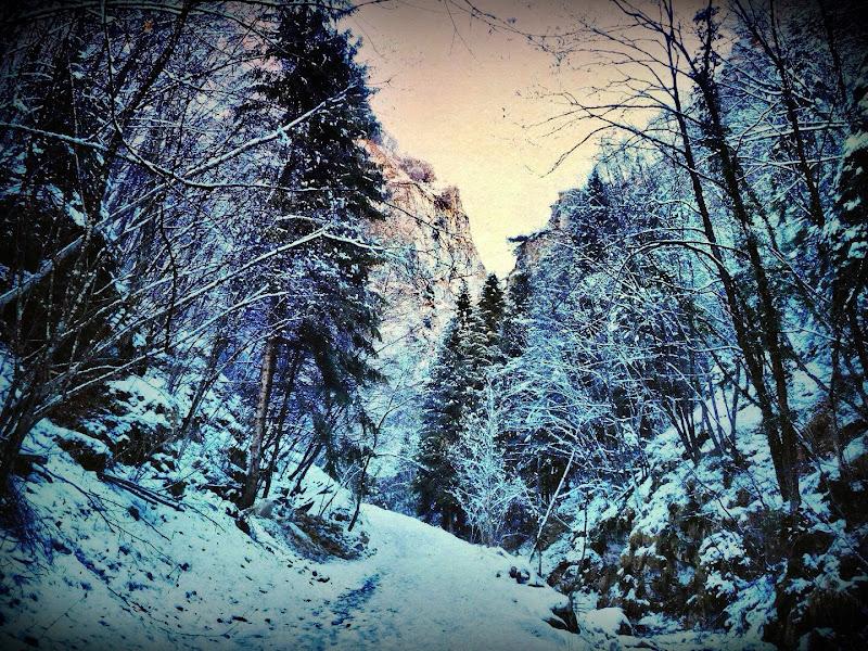 finalmente neve! di Fedinuvola