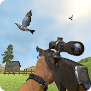 Pigeon Hunting Pigeon Pop Pigeon Shoot