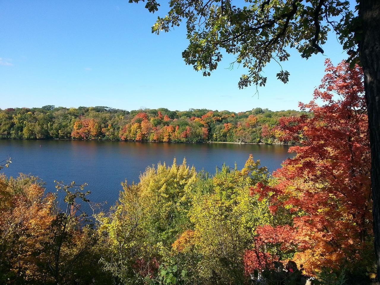 fall-foliage-640070_1280.jpg