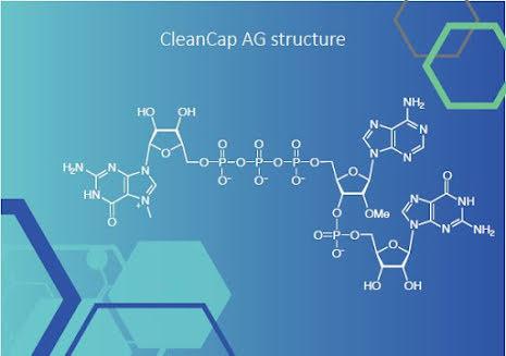 Trilink custom RNA synthesis