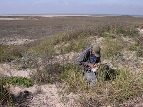 Photo: Checking a sweep sample on South Padre Island.