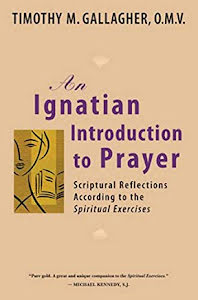 THE DISCERNMENT OF SPIRITS AN IGNATION INTRODUCTION TO PRAYER SCRIPTURAL REFLECTIONS ACCORDING TO THE SPIRITUAL EXERCISES
