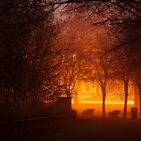 Victoria park in the mist by Paschalis Angelopoulos - City,  Street & Park  City Parks ( orange, benches, victoria park, spooky, dark, city lights, dusk, misty, mist,  )