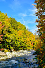 Photo: Fall beauty at Jamaica State Park by Bill Steele