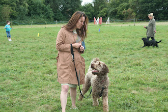 Photo: Kerry and Brian Labradoodle
