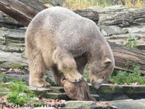 Photo: Knut waessert seinen Jutesack ;-)