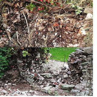 This was a curved dry stone wall before it was destructed by a growing vine