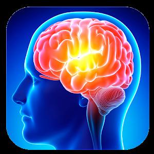Memory improvement basics