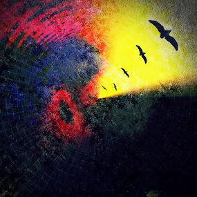 New directions by Mansi Bhatia - Abstract Fine Art ( abstract, iphoneography, light, birds )