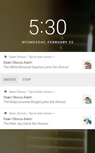 Dawn Chorus- screenshot thumbnail