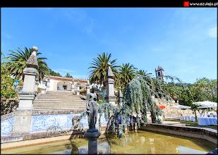 Photo: Jardim de aperitivos