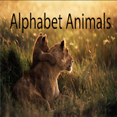AR Alphabet Animals