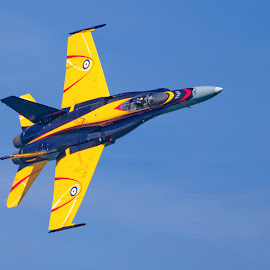 Airplane 892 by Raphael RaCcoon - Transportation Airplanes