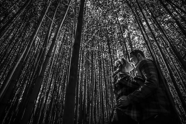 Fotógrafo de bodas Gerardo Marin Elizondo (marinelizondo). Foto del 15.08.2017