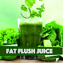Fat Burning Juices icon