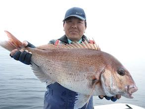 Photo: これもナイスサイズ!真鯛4kgでした!