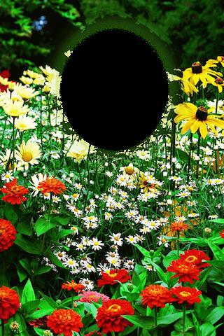 ... Garden Photo Frames ...