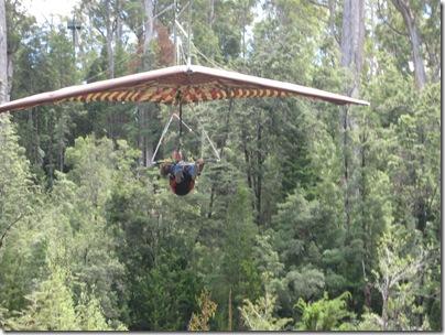 2007-01-24 Tasmania 114