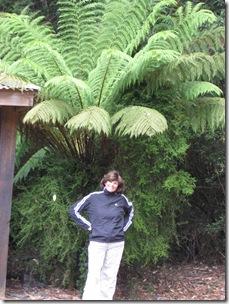 2007-01-24 Tasmania 118