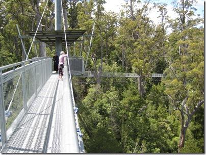 2007-01-24 Tasmania 154