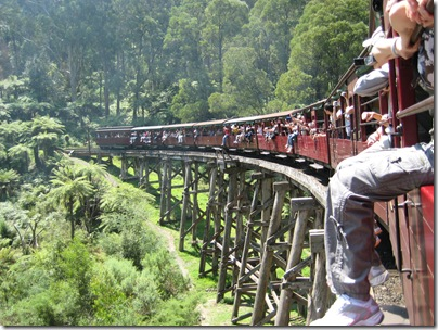 2007-02-03 Puffing Billy, Melbourne 011