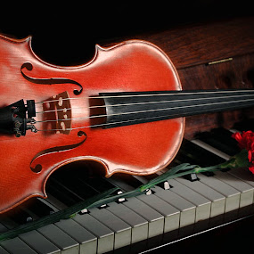 by Darko Kordic - Artistic Objects Musical Instruments
