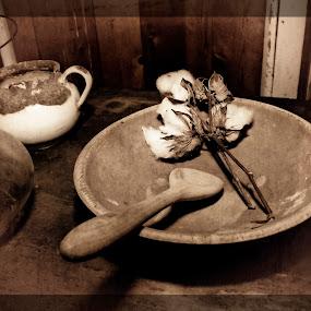 plantation slave quarters  by Brook Kornegay - Artistic Objects Antiques ( cotton, sepia, still life, antiques,  )